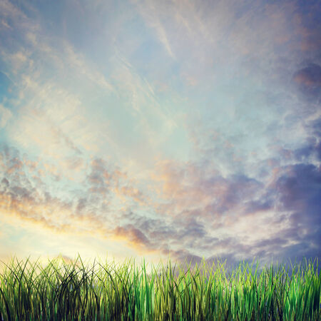 Dramatic summer landscape with sunset cloudy sky and grass photo