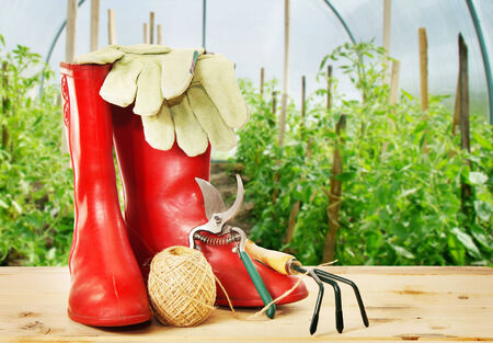 Garden tools and rubber boots into greenhouse photo