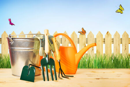 Gardening composition with tools against green grass and wooden fence photo