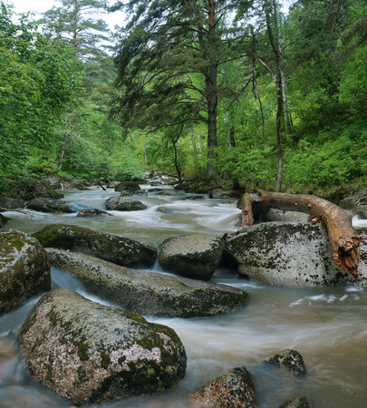 Beautiful landscape with rapid mountain river