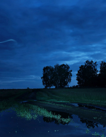 tonight: Night summer landscape with cloudy sky and trees on horizon