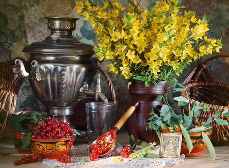 red currant: Rural still life with yellow flowers and red currant Stock Photo