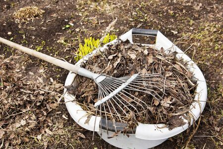 kitchen garden: Spring cleaning in a kitchen garden Stock Photo