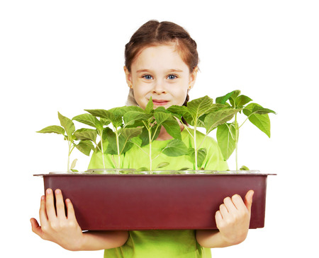 Little girl with a box of seedlings isolated over white background 免版税图像