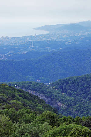 forested: Forested Caucasian mountains in neighborhoods the city of Sochi in Russia