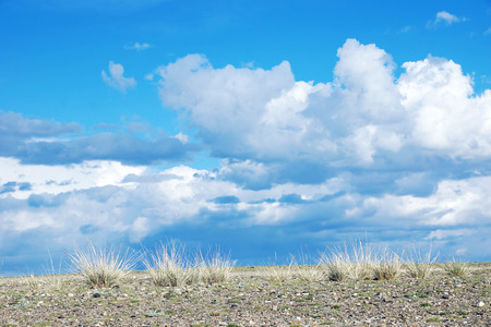 inanimate: Stony desert and blue sky with cumulus clouds