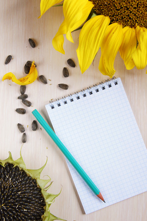 scratchpad: Composition with sunflowers and a notepad
