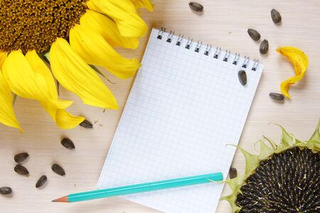 scratchpad: Composition with sunflowers and an empty notepad