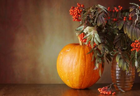 rowan tree: Autumn still life with a pumpkin and rowan tree branches in the vase