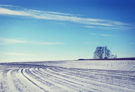 snowed: Landscape with snowed cultivated agricultural field in early winter Stock Photo