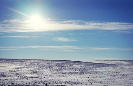 snowed: Landscape with snowed cultivated agricultural field in sunny winter day