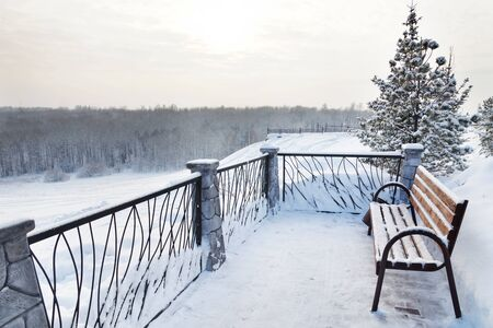 metal handrail: Bench in the winter park and the forest in a distance Stock Photo