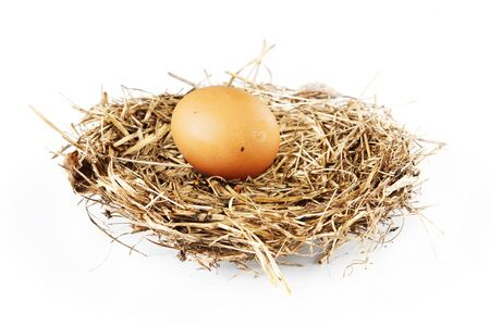 incubate: Bird nest with an egg isolated on white background Stock Photo