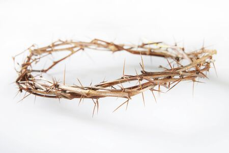 torment: Crown of Thorns lies on light background Stock Photo
