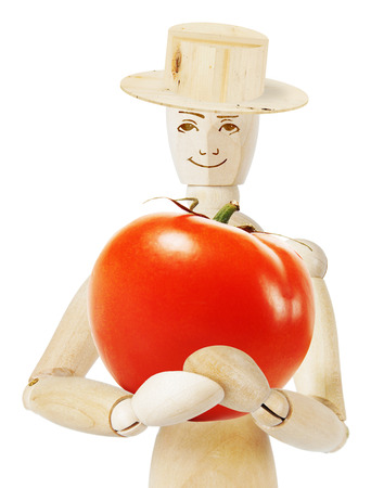 marioneta de madera: Gardener holds a huge ripe tomato. Abstract image with a wooden puppet