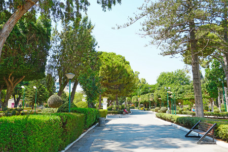 LIMASSOL, CYPRUS - AUGUST 09, 2018. In the Limassol Municipal Park in Cyprus