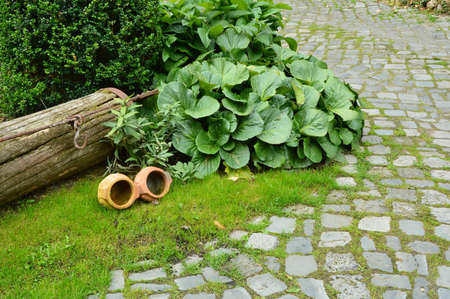antiques: Garden and Antiques Stock Photo