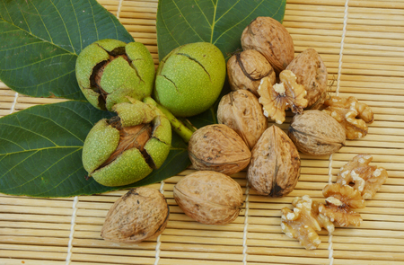 Juglans Before and after the shell Stock Photo