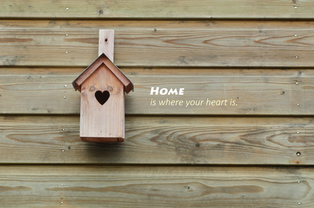 Home is where your heart is. bird home with wooden background