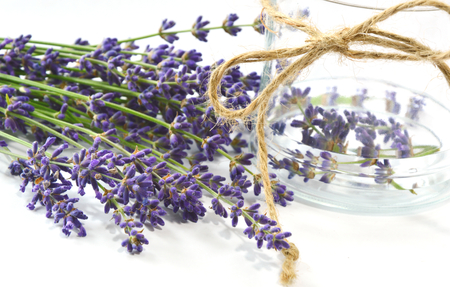 a hemp string tied with Glass bottle and lavender in the morning light. Lavender helps you to sleep better.