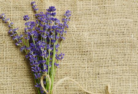 sackcloth: flower on sackcloth background Stock Photo