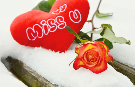colorful roes and red heart on the table with snow.