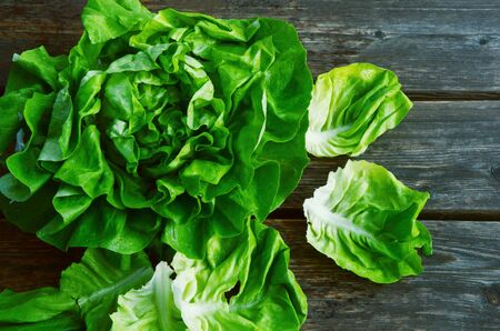 colorful and fresh of butterhead lettuce with shadow on wooden background. Stock Photo