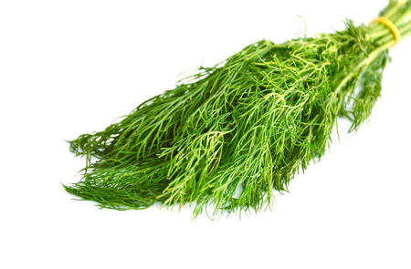 Dill with white background