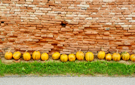 Pumpkin lined with brick walls Stock Photo