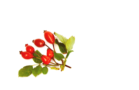Amazing Health Benefits Of Rose Hips