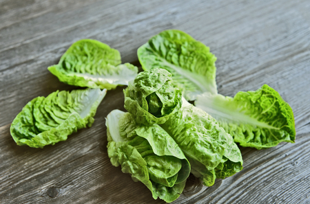A lot of fresh romaine lettuce on wooden floor. Healthy and benefits of green leaf lettuce. Stok Fotoğraf