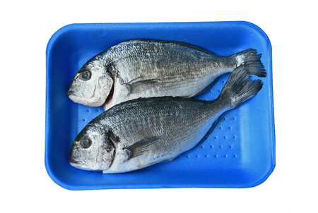 Fresh Sea Bream (Sparus Aurata) (German name is Goldbrasse) on blue Foam tray on white background. Stok Fotoğraf