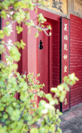 crassula ovata: Red Chinese Lucky Door. The gateway through the red Chinese lucky doors just past the lucky money plant.