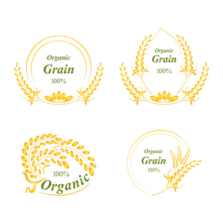 rice plant: Rice logo, symbol, grain organic natural product, concept vector illustration