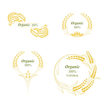 rice grain: Rice, symbol, grain organic natural product, concept vector illustration