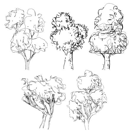 Hand drawn tree  isolated vector illustration art sketching  of vector trees symbols in naive style Pen and ink tree