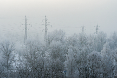 High-voltage towers among the snow-covered trees during the fog Stockfoto