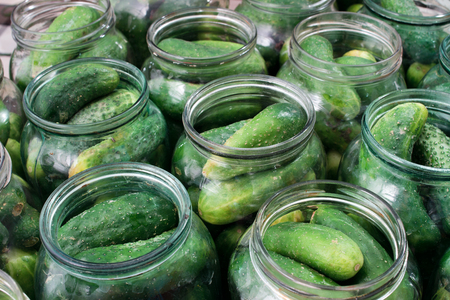 fresh cucumbers in cans for canning.Tasty pickled cucumbers in a jar. Preparation of cucumbers for pickles.