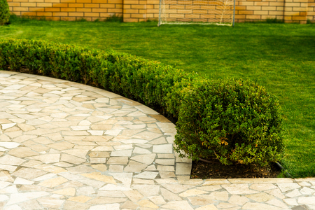 mowed lawns with shrubs near the stone walkway in landscape design Фото со стока