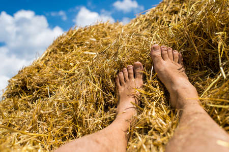 men's legs in the hay after harvest, hay agricultural with collected crops.