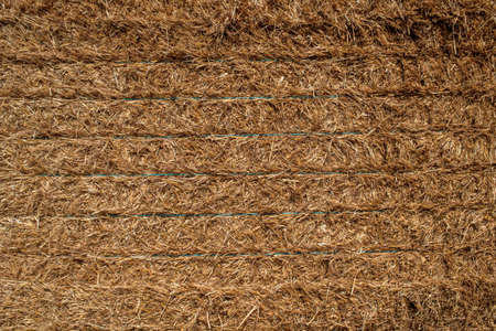 texture of freshly mown hay after harvesting