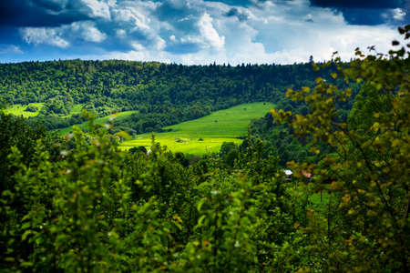 Green mountains and mountain valleys in the Ukrainian Carpathians, Lviv region