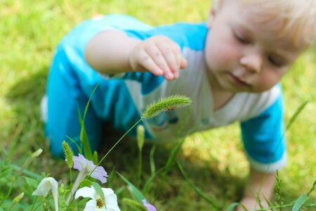 bebe gateando: Beb� que se arrastra y la exploraci�n de las flores