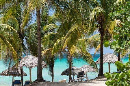 varadero: Palm beach in Varadero Cuba Stock Photo