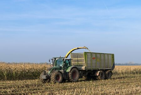 cor: Cor harvest with tractor and trailer