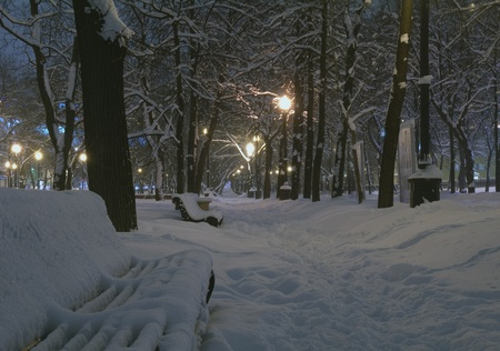 Night view of snow-covered boulevard. photo
