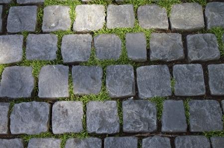 pave: Grass makes its way through the cobblestone pavement.