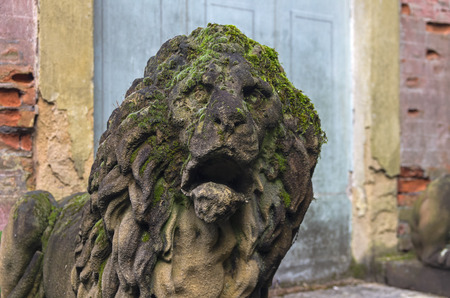 Moss-covered stone lion head. A fragment of a stone statue in the old park. Italy. Stock Photo