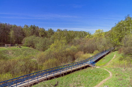 marshy: Pedestrian bridge over the marshy ravine. Nice sunny day in May. Stock Photo