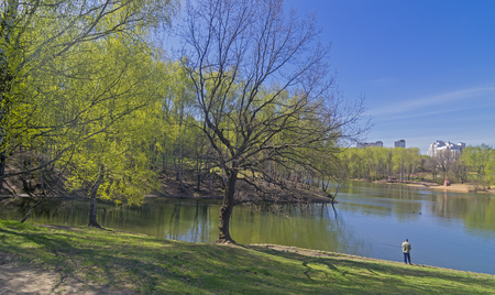 canard: A lone fisherman on the shore of a pond in the forest park. Nice sunny day in May.